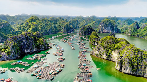From Cat Ba town: Lan Ha bay cruise and Monkey island day tourp