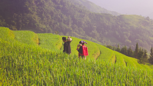 From Hanoi: Sapa 03 Days tour (02 nights in the hotel in Sapa Town)p