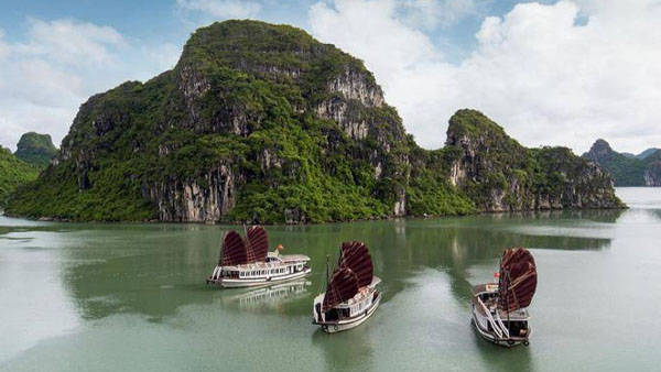 Halong bay day cruise & Private Car Transfer