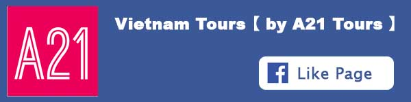 Likes A21 Tours on Facebook
