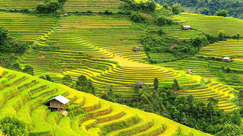 5 Amazing Trekking Trails in Sapa